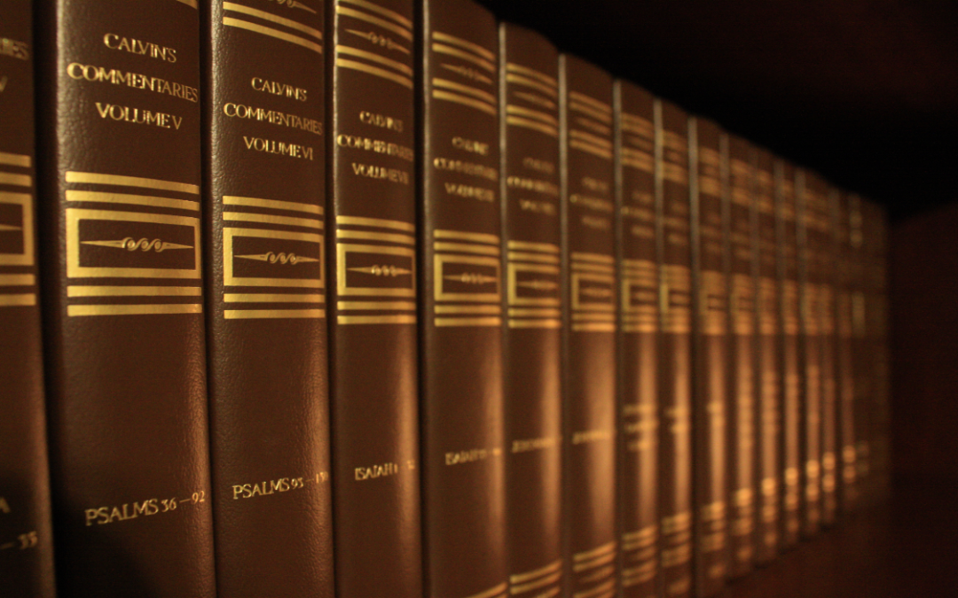 an overview of the the book calvin A shorter overview of john calvin's theology taken from the institutes of the christian  calvin says he had dealt with this in book i where he explained the .
